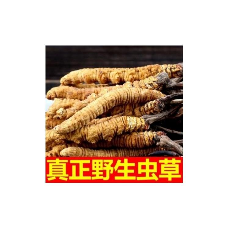 沈阳虫草回收 沈阳虫草回收价格  沈阳虫草回收公司